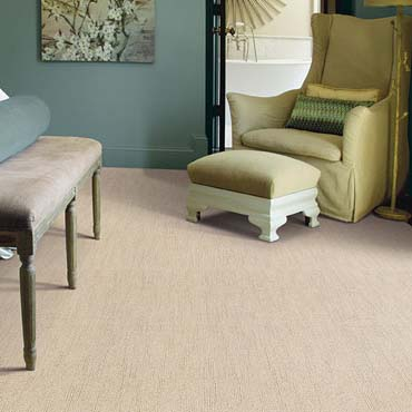 Caress Carpet by Shaw | North Myrtle Beach, SC