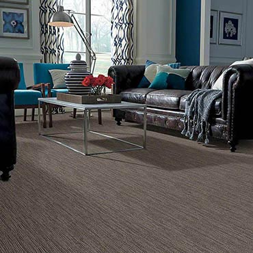 Anso® Nylon Carpet | North Myrtle Beach, SC