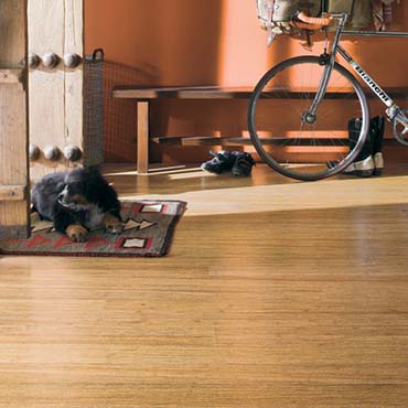 Teragren Bamboo Flooring | North Myrtle Beach, SC
